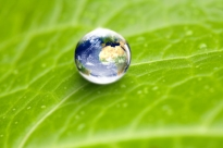 Why The Planet Matters to Marketers